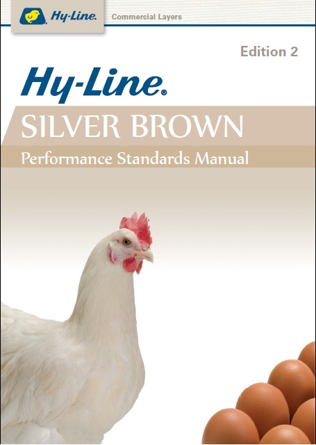 Hy-line Silver Brown
